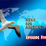News for Migrants – Episode Fith